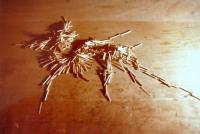 Streichhölzer auf Holzplatte - zerstört